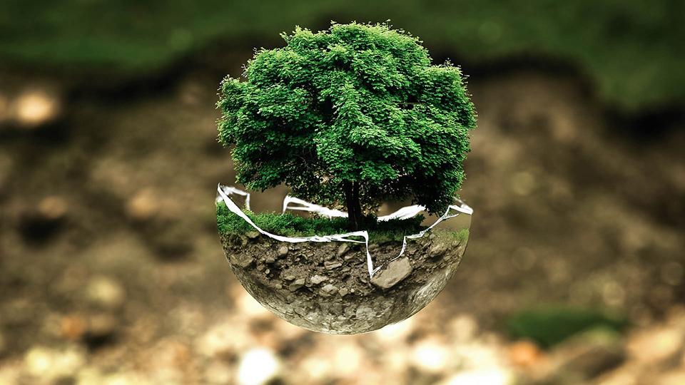 Post-Covid 19: un modo sostenible de vida bajo el reino del cuidado (III)