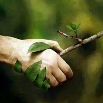 Una lectura de ciego de la encíclica ecológica Laudato Si'