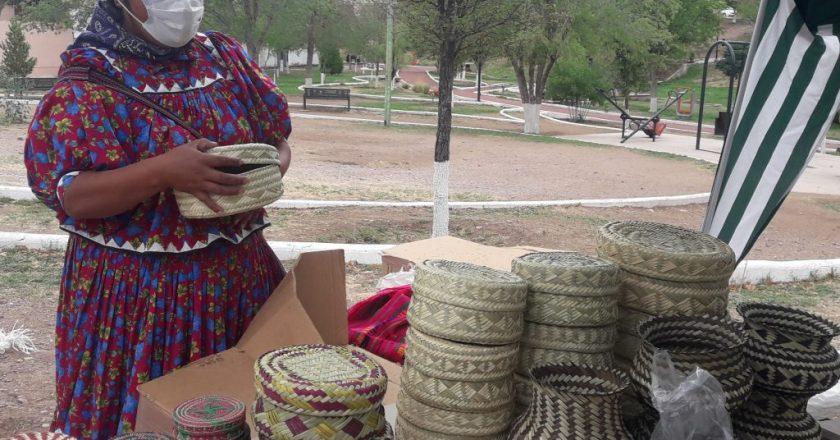 <strong>Pandemia incrementa la demanda de alimentos en la Tarahumara: Cedaín</strong>